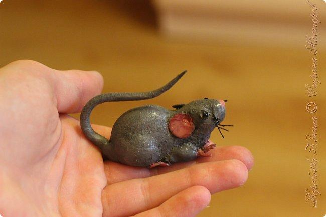 Приветствую гостей на моей страничке. Пару месяцев назад моя мама нашла у меняя в шкафу заброшеную мышь. Это был обыкновенный магнит. Был он в ужасном состоянии... фото 1
