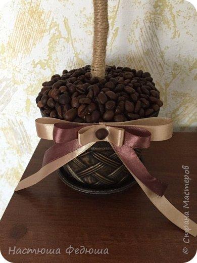 Кофейный топиарий фото 3