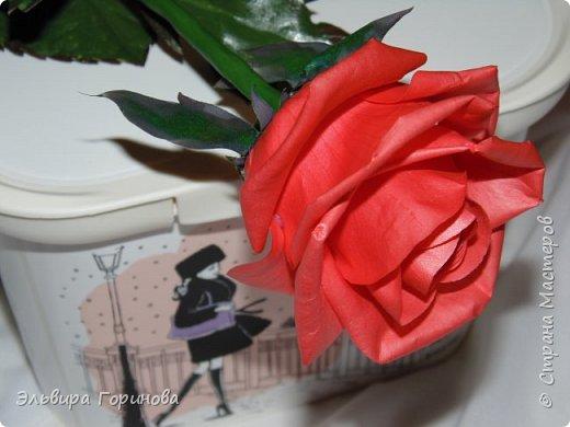 Бутон и листья из фоамирана, стебель из холодного фарфора, сделаны по МК Александры Троицкой. фото 2