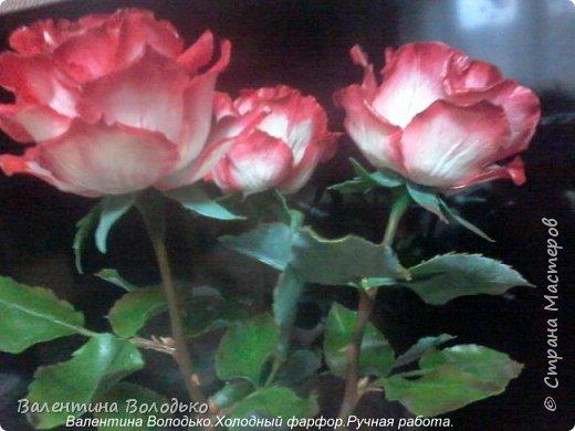 Добрый день мастера и мастерицы!!!!Вот такие розы слепила для своей доченьки.Давно хотела сделать розы такой расцветки,наконец получилось. фото 1
