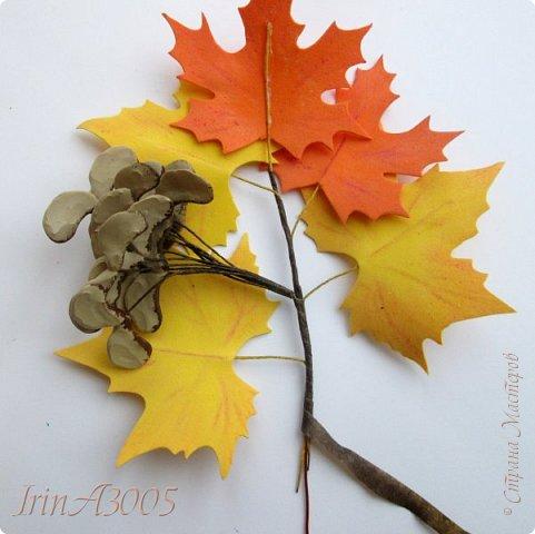 Букет кленовый свеж и так хорош! В нём - музыка, поэзия и счастье. Он с золотой короной очень схож, Сияющей среди тоски ненастья. Кружит, кружит осенний листопад, В букеты листья клёнов собирает.  фото 14