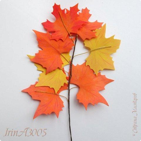 Букет кленовый свеж и так хорош! В нём - музыка, поэзия и счастье. Он с золотой короной очень схож, Сияющей среди тоски ненастья. Кружит, кружит осенний листопад, В букеты листья клёнов собирает.  фото 15