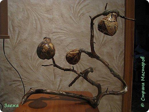 Лампа сделана из декоративной высушенной тыквы.Рисунок  на тыкве сделан выжигателем. Основа лампы- ветка. фото 2