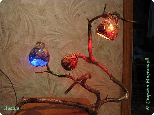 Лампа сделана из декоративной высушенной тыквы.Рисунок  на тыкве сделан выжигателем. Основа лампы- ветка. фото 3