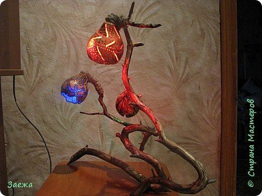 Лампа сделана из декоративной высушенной тыквы.Рисунок  на тыкве сделан выжигателем. Основа лампы- ветка. фото 4