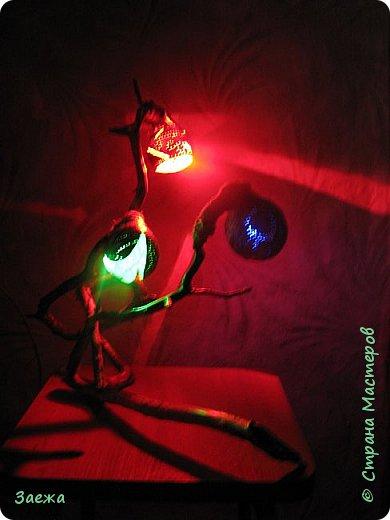 Лампа сделана из декоративной высушенной тыквы.Рисунок  на тыкве сделан выжигателем. Основа лампы- ветка. фото 5