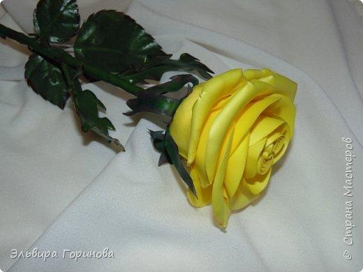 Бутон и листья из фоамирана, стебель из холодного фарфора, сделаны по МК Александры Троицкой. фото 5