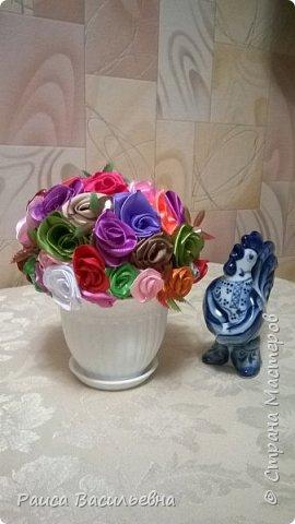 В этом месяце у подружек дни рождения, вот и подготовила два вазона с разными цветами. Этот с розами. фото 2