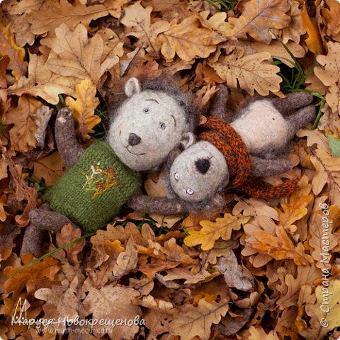 Ежиковая осень