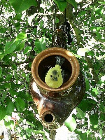Как-то выкладывала садовый домик для гномика http://stranamasterov.ru/node/789981. Теперь показываю, какую крышу смастерила для него из обрезков кровельного материала в прошлом году (снимок прошлого года). В этом году дочь покрасила фронтон и крылечко ярко-желтой краской - КРАСОТА!!! фото 3