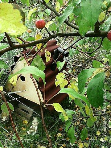 Как-то выкладывала садовый домик для гномика http://stranamasterov.ru/node/789981. Теперь показываю, какую крышу смастерила для него из обрезков кровельного материала в прошлом году (снимок прошлого года). В этом году дочь покрасила фронтон и крылечко ярко-желтой краской - КРАСОТА!!! фото 2