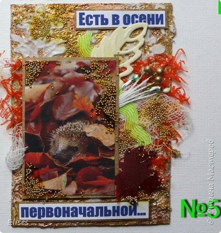 """АТС """"Золото осени"""" (закрыта) фото 6"""