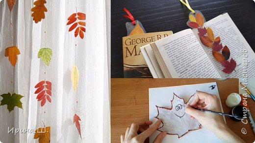 Ламинирование, как способ сохранения осенних листьев. И идеи применения ламинированных листьев.