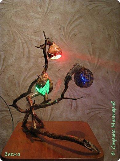 Лампа сделана из декоративной высушенной тыквы.Рисунок  на тыкве сделан выжигателем. Основа лампы- ветка. фото 7