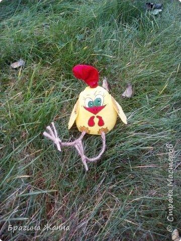 Всем жителям замечательной страны огромный привет.сегодня я к вам с малышкой)))петушком ,но еще цыпленком))))автор такого цыпленка замечательная мастерица Л.Набиуллина ,но мк у нее платные .и вот увидела я такого петушка вот тут http://stranamasterov.ru/node/1049448 за что спасибо девочкам за вдохновение)))))))))))))))) покупать мк я не имею возможности )))а вот самой попробовать посмотрев просто на картинку мне захотелось))))и вот что у меня получилось))очень быстро и без проблем)))чего и вам желаю! фото 9