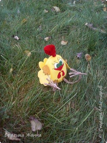 Всем жителям замечательной страны огромный привет.сегодня я к вам с малышкой)))петушком ,но еще цыпленком))))автор такого цыпленка замечательная мастерица Л.Набиуллина ,но мк у нее платные .и вот увидела я такого петушка вот тут http://stranamasterov.ru/node/1049448 за что спасибо девочкам за вдохновение)))))))))))))))) покупать мк я не имею возможности )))а вот самой попробовать посмотрев просто на картинку мне захотелось))))и вот что у меня получилось))очень быстро и без проблем)))чего и вам желаю! фото 6