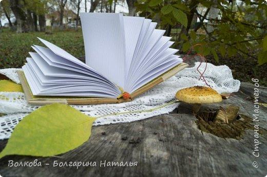 """Всем привет! И зимой, и летом....и осенью кото-блокнотики у меня всегда в особом почёте:)  В работе использовала 2 клиновых листа +  штампик """"Кошка"""" от магазина """"Арт-Кладовая"""".  фото 9"""