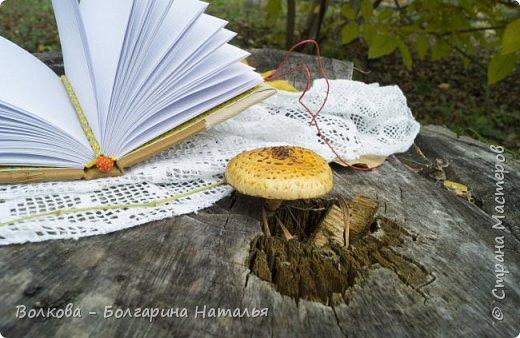 """Всем привет! И зимой, и летом....и осенью кото-блокнотики у меня всегда в особом почёте:)  В работе использовала 2 клиновых листа +  штампик """"Кошка"""" от магазина """"Арт-Кладовая"""".  фото 10"""