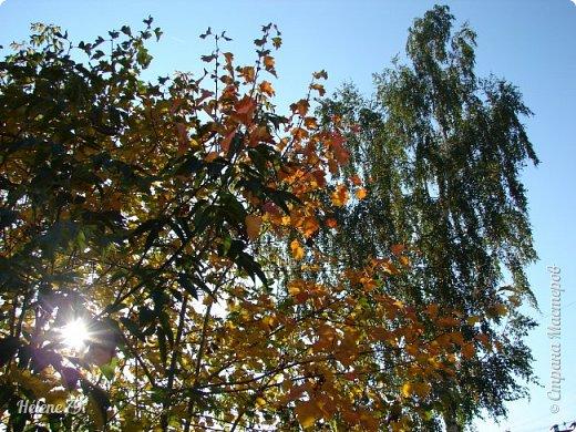"""""""Осень. Сказочный чертог,  Всем открытый для обзора.  Просеки лесных дорог,  Заглядевшихся в озера.    фото 4"""