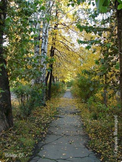 """""""Осень. Сказочный чертог,  Всем открытый для обзора.  Просеки лесных дорог,  Заглядевшихся в озера.    фото 24"""