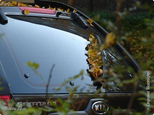 """""""Осень. Сказочный чертог,  Всем открытый для обзора.  Просеки лесных дорог,  Заглядевшихся в озера.    фото 31"""