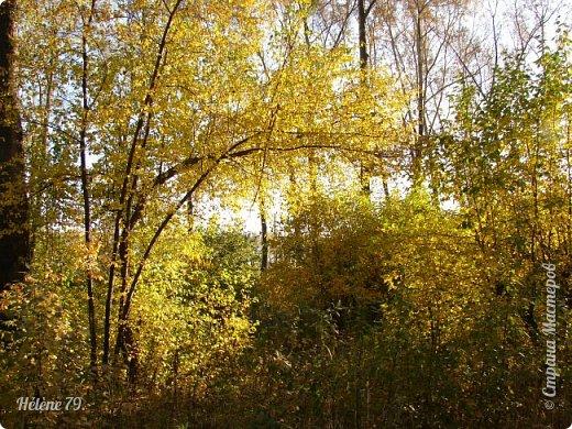 """""""Осень. Сказочный чертог,  Всем открытый для обзора.  Просеки лесных дорог,  Заглядевшихся в озера.    фото 36"""
