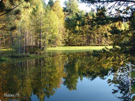 """""""Осень. Сказочный чертог,  Всем открытый для обзора.  Просеки лесных дорог,  Заглядевшихся в озера.    фото 1"""