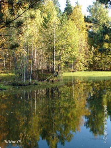 """""""Осень. Сказочный чертог,  Всем открытый для обзора.  Просеки лесных дорог,  Заглядевшихся в озера.    фото 38"""