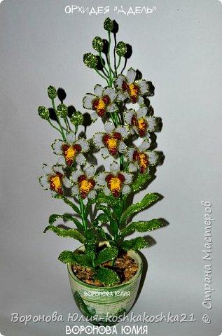 Дорогие рукодельницы,представлю вам моих красоток.Орхидеи сделаны ко дню рождения моей мамы. Красную я уже показывала,а вот белая тут впервые))))  фото 2