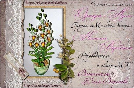 Дорогие рукодельницы,представлю вам моих красоток.Орхидеи сделаны ко дню рождения моей мамы. Красную я уже показывала,а вот белая тут впервые))))  фото 4