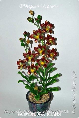Дорогие рукодельницы,представлю вам моих красоток.Орхидеи сделаны ко дню рождения моей мамы. Красную я уже показывала,а вот белая тут впервые))))  фото 6
