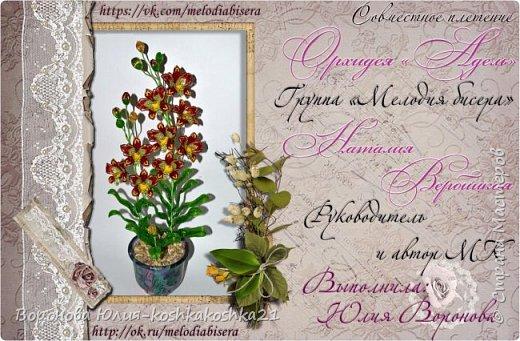 Дорогие рукодельницы,представлю вам моих красоток.Орхидеи сделаны ко дню рождения моей мамы. Красную я уже показывала,а вот белая тут впервые))))  фото 7