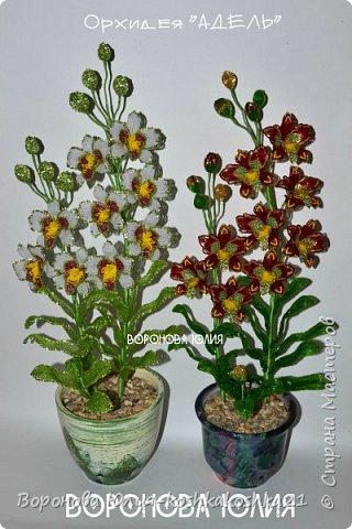 Дорогие рукодельницы,представлю вам моих красоток.Орхидеи сделаны ко дню рождения моей мамы. Красную я уже показывала,а вот белая тут впервые))))  фото 1