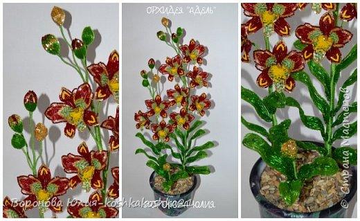 Дорогие рукодельницы,представлю вам моих красоток.Орхидеи сделаны ко дню рождения моей мамы. Красную я уже показывала,а вот белая тут впервые))))  фото 5