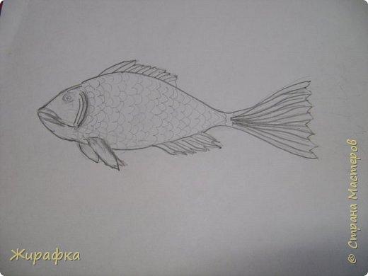 И снова пластилин... Рыбка. фото 4