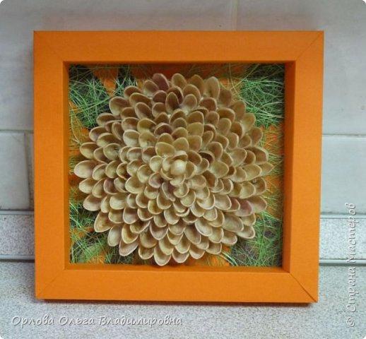 Работа ученицы 5 кл., из скорлупок фисташек, сезаля, сушенных осенних листьев. фото 1
