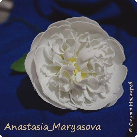 Цветы из фоамирана.  фото 11