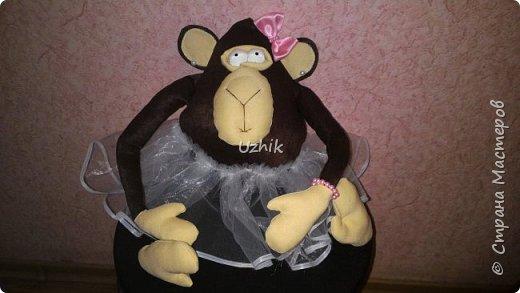 Вот такой талисман сделала на год обезьянки)) Почти год он верно служит у мамы на работе))