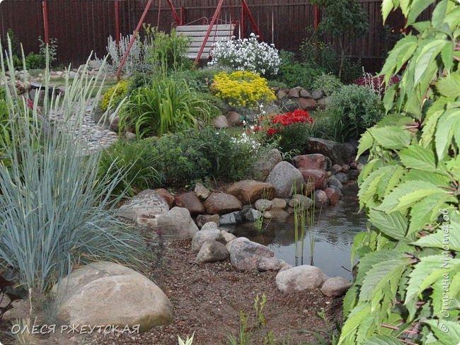 12. октября  а ещё столько красок в саду. Это моя мечта ,мои мысли , мои молитвы,моя радость -моя жизнь . С мужем до глубокой ночи работаем на участке,в этом году сделали пруд. и завели много новых зелёных питомцев. фото 15