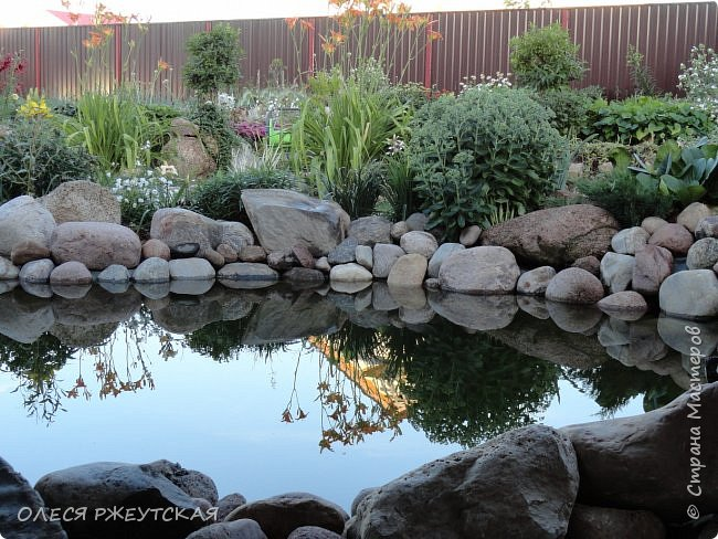 12. октября  а ещё столько красок в саду. Это моя мечта ,мои мысли , мои молитвы,моя радость -моя жизнь . С мужем до глубокой ночи работаем на участке,в этом году сделали пруд. и завели много новых зелёных питомцев. фото 18