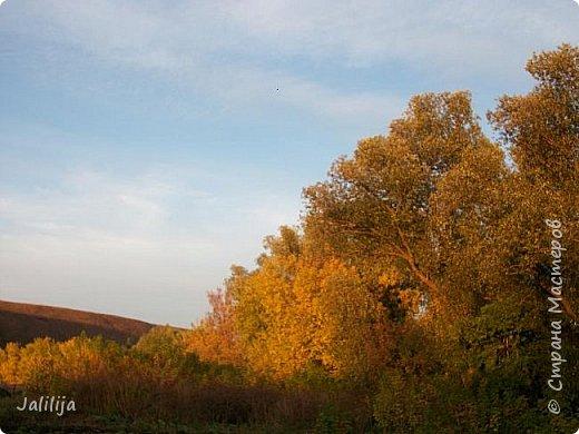 Всем своим гостям желаю хорошего настроения и приглашаю полюбоваться  красками осени моего края. фото 24