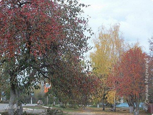 Всем своим гостям желаю хорошего настроения и приглашаю полюбоваться  красками осени моего края. фото 33