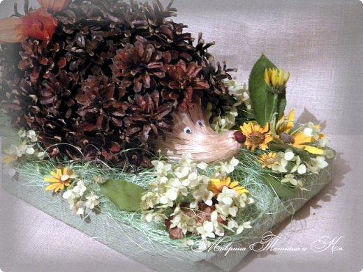 Здравствуйте! Сегодня я к вам с новой осенней поделкой. Такого замечательного ежика мы со Степаном сделали для конкурса. Использовали: шишки, физалис, сизаль, лыковое мочало, маленький каштан, кору дерева, колосья пшеницы, засушенные листья и цветы (гортензию, рудбекию, космею). фото 3