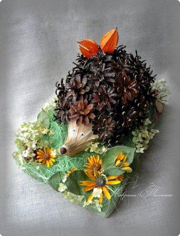 Здравствуйте! Сегодня я к вам с новой осенней поделкой. Такого замечательного ежика мы со Степаном сделали для конкурса. Использовали: шишки, физалис, сизаль, лыковое мочало, маленький каштан, кору дерева, колосья пшеницы, засушенные листья и цветы (гортензию, рудбекию, космею). фото 1