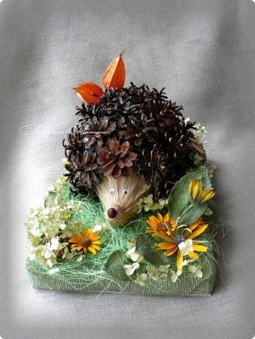 Здравствуйте! Сегодня я к вам с новой осенней поделкой. Такого замечательного ежика мы со Степаном сделали для конкурса. Использовали: шишки, физалис, сизаль, лыковое мочало, маленький каштан, кору дерева, колосья пшеницы, засушенные листья и цветы (гортензию, рудбекию, космею). фото 5
