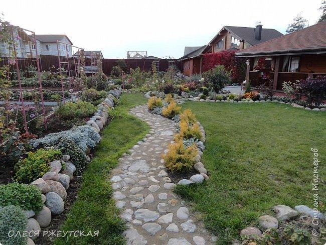 12. октября  а ещё столько красок в саду. Это моя мечта ,мои мысли , мои молитвы,моя радость -моя жизнь . С мужем до глубокой ночи работаем на участке,в этом году сделали пруд. и завели много новых зелёных питомцев. фото 60