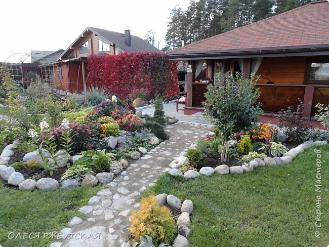 12. октября  а ещё столько красок в саду. Это моя мечта ,мои мысли , мои молитвы,моя радость -моя жизнь . С мужем до глубокой ночи работаем на участке,в этом году сделали пруд. и завели много новых зелёных питомцев. фото 61