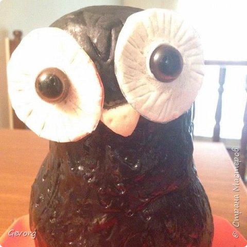 В этот раз решил сделать сову.ОНа может быть осенним декором и новогодним. И так,для такой совы понадобятся: -пакет -наполнитель(бумага,ткань и т.д.) -краски -картон -лак -соленое тесто фото 8