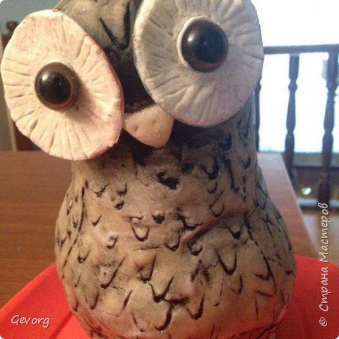 В этот раз решил сделать сову.ОНа может быть осенним декором и новогодним. И так,для такой совы понадобятся: -пакет -наполнитель(бумага,ткань и т.д.) -краски -картон -лак -соленое тесто фото 9