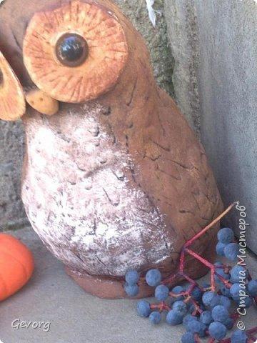 В этот раз решил сделать сову.ОНа может быть осенним декором и новогодним. И так,для такой совы понадобятся: -пакет -наполнитель(бумага,ткань и т.д.) -краски -картон -лак -соленое тесто фото 12